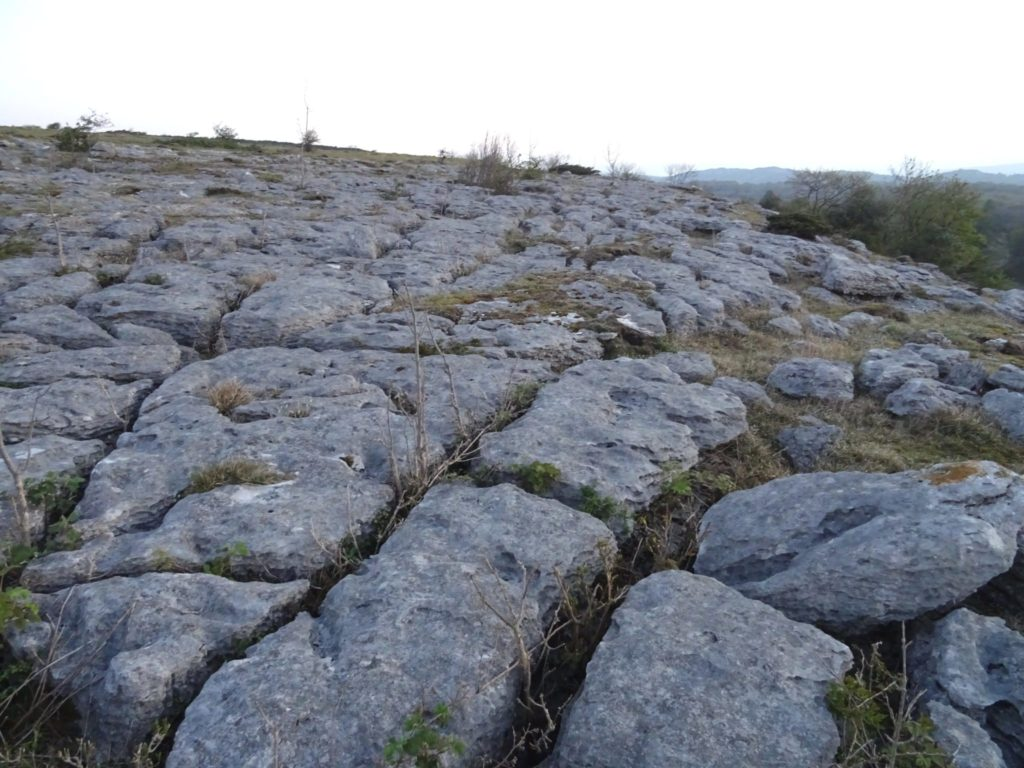 Limestone Pavement on Hampsfell