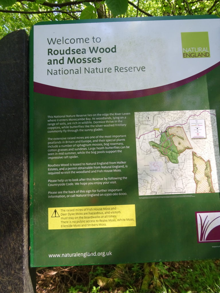 Roudsea Woods and Mosses