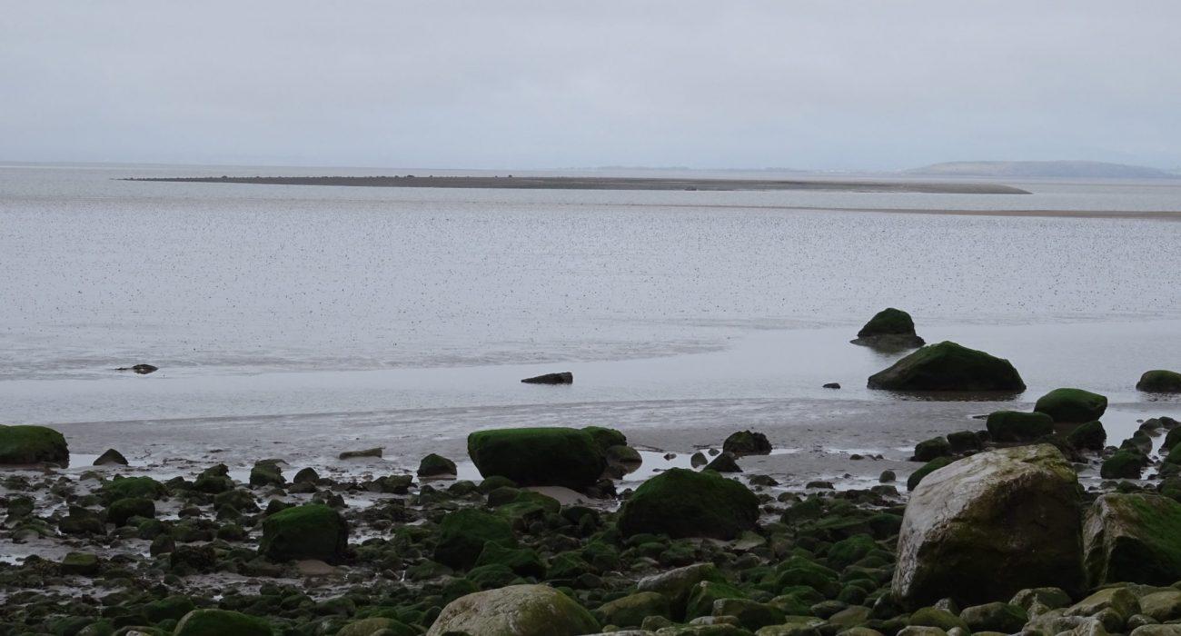 Priest Skear-Morecambe Bay