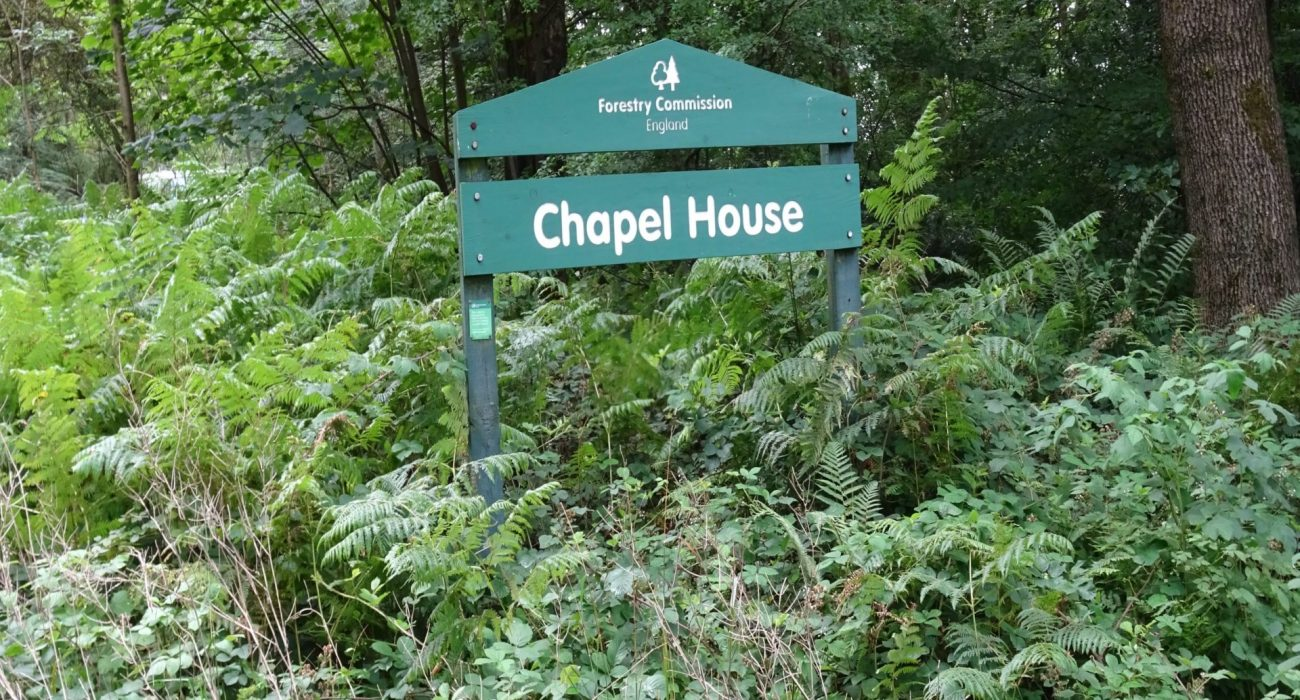 Chapel House Woods